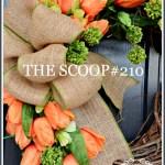 THE SCOOP #160