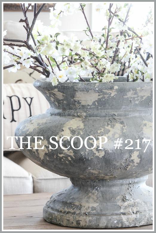 THE SCOOP #217