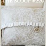 THE SCOOP #229