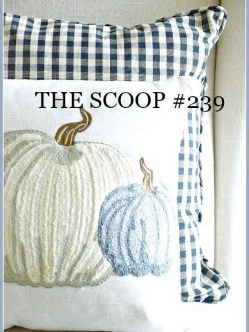 THE SCOOP #239