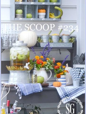 THE SCOOP #234