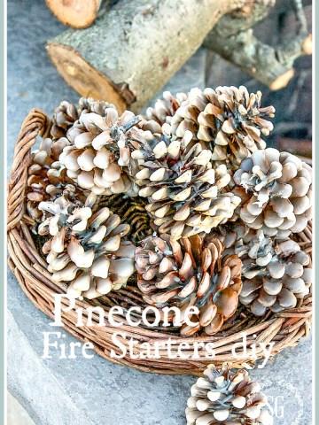 PINECONE FIRE STARTERS DIY