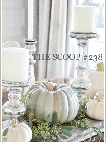 THE SCOOP #238