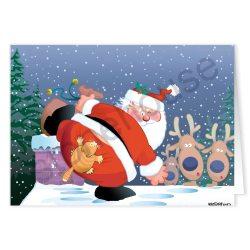 Particular Angry Cat Ny Card Angry Cat Ny Stonehouse Collection Ny Cards 2016 Ny Cards Canada cards Funny Christmas Cards