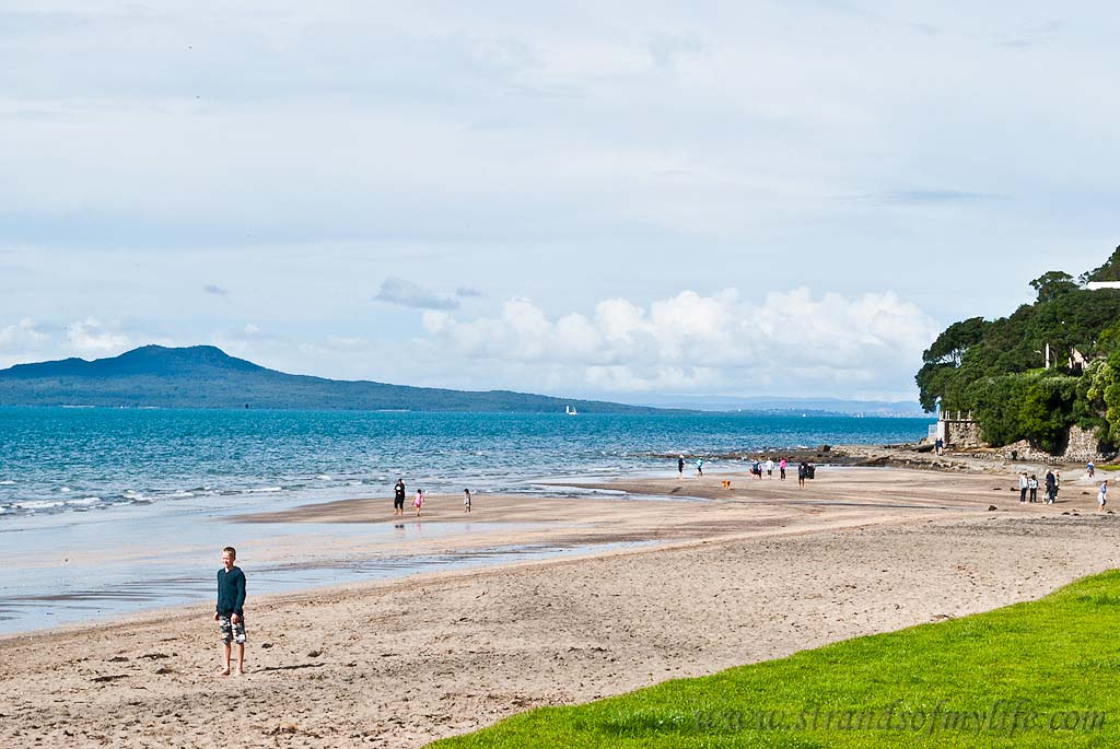 Mairangi Bay Beach Auckland