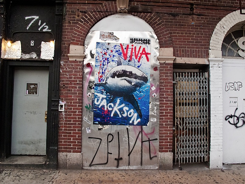 viva_jackson_shark_east_village.jpg