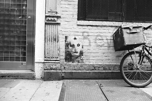 alien street art by dw krsna found in SoHo, NYC
