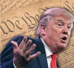 Trump - Constitution ignorance