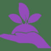 plant-on-a-handg_lila