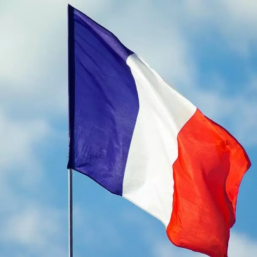 100 most frequently used French words