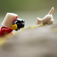 A toy safari is a chance to share a passion