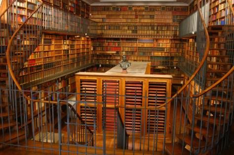 Cette Bibliothèque du Musée Condé (Domaine de Chantilly) est d'un genre totalement différent ! Deux siècles, environ, séparent sa construction et celle de la bibliothèque de Lyon (ci-dessus).