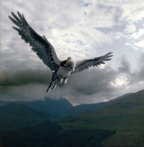 """Capture d'écran de """"Harry Potter et le Prisonnier d'Azkaban""""."""