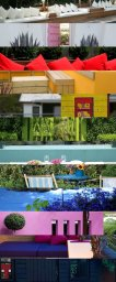 rainbow of color garden inspiration