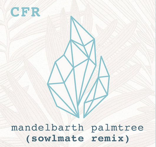 Mandelbarth – Palmtree (Official Sowlmate Remix)