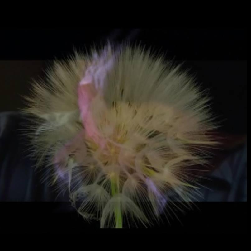 Nahja Mora – Actualiser