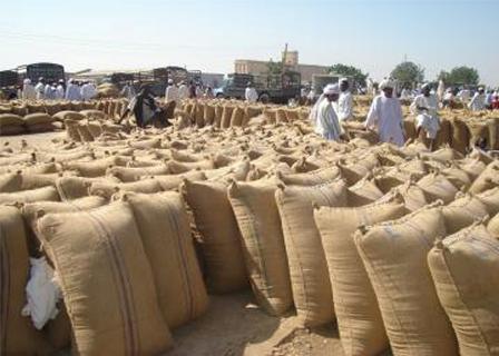 المطاحن تنفذ توجيهات الحكومة باستلام القمح بعد اتفاق بخلطه مع المستورد