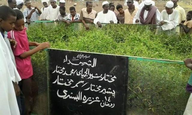 ظهور اسم الجلالة علي مقبرة الشهداء بطابت
