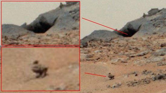 بالصور.. من رأس أوباما إلى تمثال بوذا.. أجسام غريبة يتم رصدها على المريخ