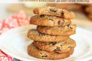 Almost Oatmeal Cookies from Everyday Grain-Free Baking!