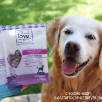 I and Love and You Dog Treats
