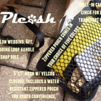 Pleash Leash Makes Dog Walking Convenient