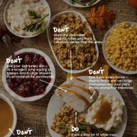 Do's and Don't of Sharing Turkey With Your Dog