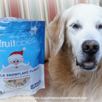 Dog Treats Made with Real Snowflakes