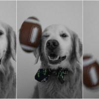 Super Bowl FUNball