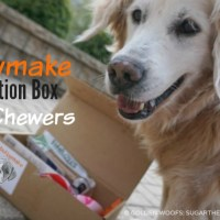 Bullymake Subscription Box for Dog Chewers