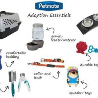 Celebrate National Dog Day with Petmate Adoption Essentials