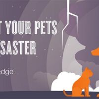 Sign ASPCA Pledge: Protect Your Pets From Disaster #NatlPrep