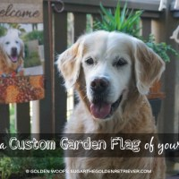 Make A Custom Garden Flag Of Your Pet at Flagology