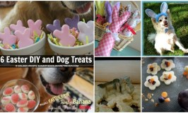 6 Easter DIY and Dog Treats + Tips for Dog Friendly Easter