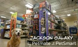 Jackson Galaxy Collection by Petmate at PetSmart