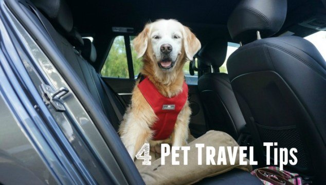 4 Pet Travel Tips #BeSleepypodSafe