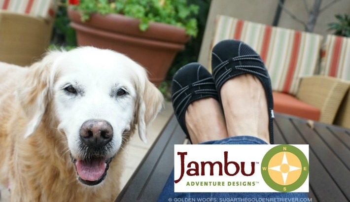 8 Reasons #JambuFootwear Good Enough For Dog Walking Shoes