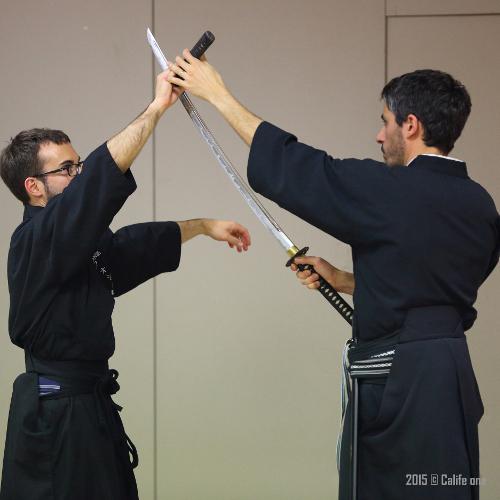 iaido sport santé
