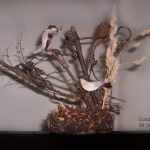 Birds on Fallen Trees