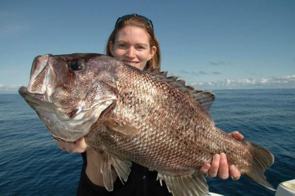 Fishing_Salmon_Blue_King_Accommodation_Karumba-Point-Sunset-Caravan-Park-0030