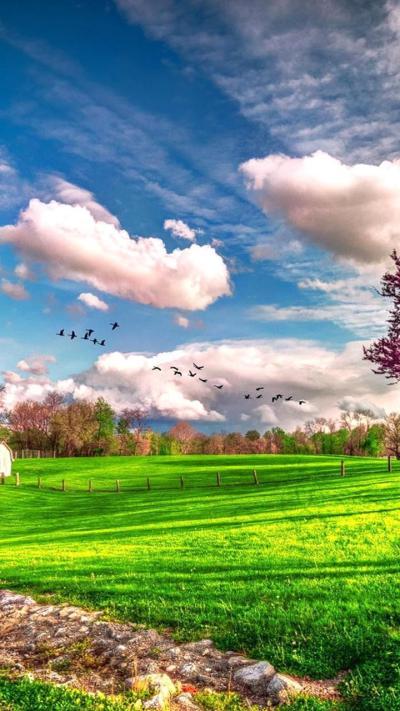 Landscape beautiful spring nature - HD wallpaper Wallpaper Download 720x1280
