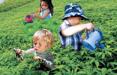 niños con marihuana