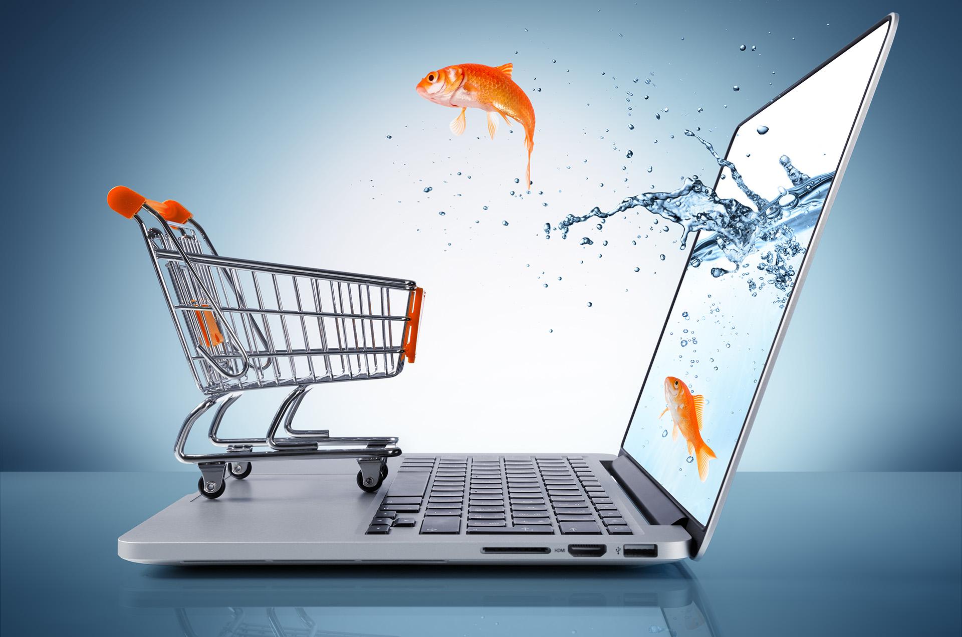 magento commerce development