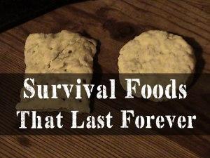 hardtack,Best Survival Foods That Lasts Forever
