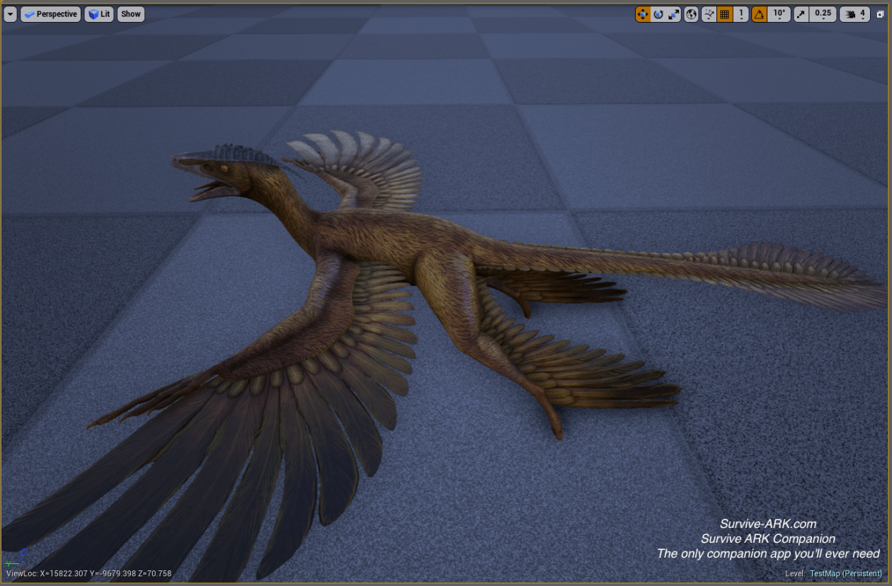 microraptor2