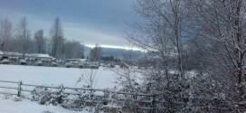Snowed in Vancouver 2012