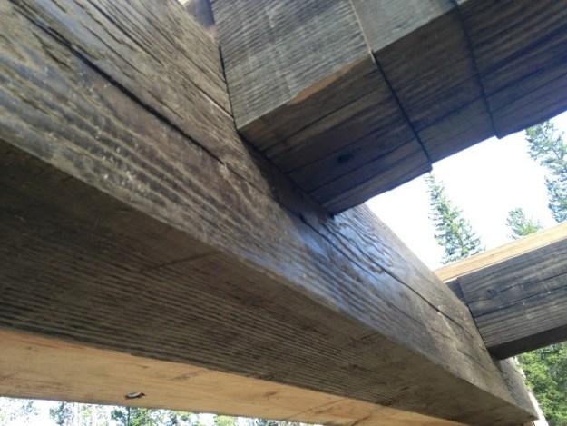 timbers-
