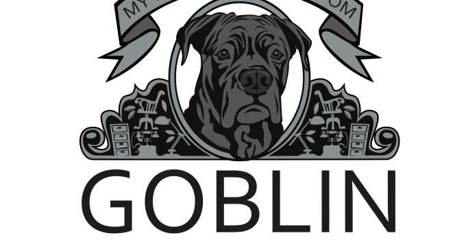 Goblin Accounting AB och ADHD