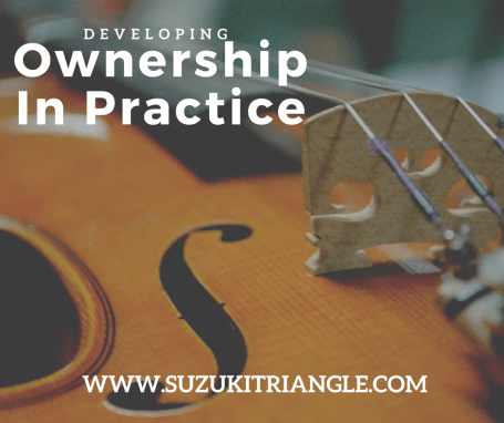 Ownership in Practice