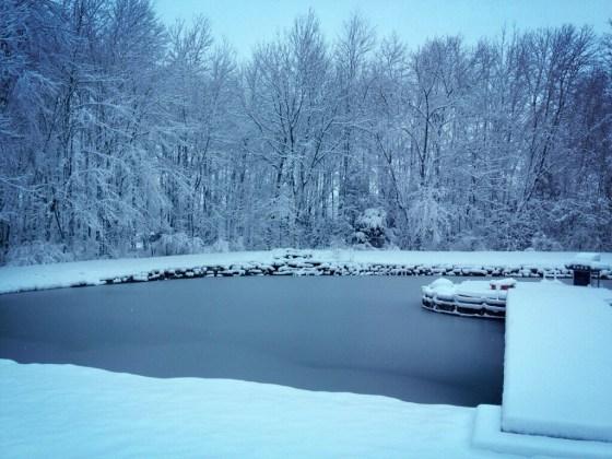 bb winterwonder